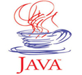 software and web development technology - Java Technology